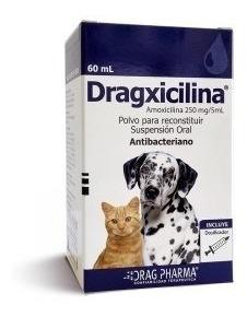 Dragxicilina® Suspensión Oral 60ml Perro, Gato, Huron, Cuy,