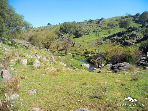 20 Hectáreas En Loma Alta (villa Berna) Calamuchita