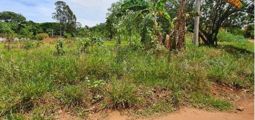 Imagem 1 de 6 de Venda De Rural / Chácara  Na Cidade De Araraquara 10826