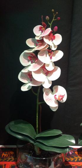Arreglos Florales Orquidea En Caja De Cristal En Mercado