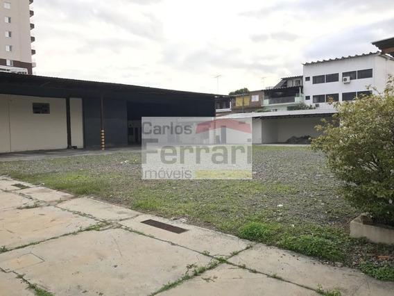 Galpão Na Vila Guilherme Com 2000m² - Cf13720