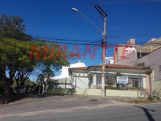 Casa Terrea Em Vila Pauliceia - São Paulo, Sp - 320811