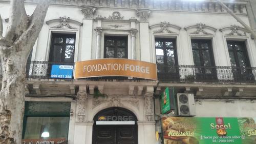 Para Empresa O Instituto Inmueble En Centro De Montevideo.