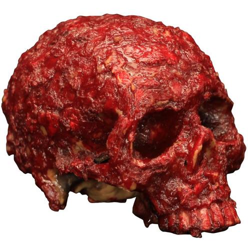 Imagen 1 de 1 de Decorativo Cráneo De Resina Blood Scab Resin Skull