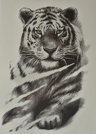 Tatuagem Temporaria - Perfeita - Realista Tigre