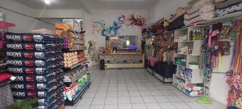 Imagem 1 de 13 de Pet Shop, Consultório, Banho E Tosa, Hotelzinho E Residência