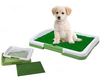 Baño Ecologico Puupy Potty Pad Para Mascotas Perros Gatos