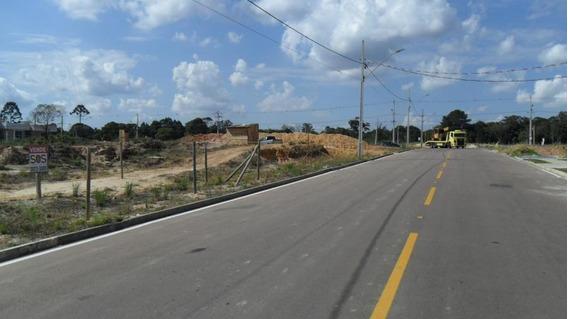 Terreno Para Venda Em Araucária, Iguacu - 4770120120 Dona Rosa