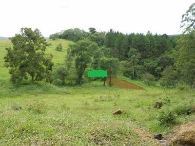Sitio Residencial Em Ibiuna - Sp, Carmo Messias - S 7