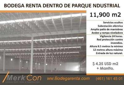 Bodega Renta 11,900 M2 Parque Industrial En Salamanca, Gto. Mexico
