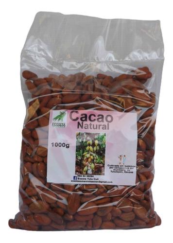 Cacao Organico (2 Kg De Semilla)