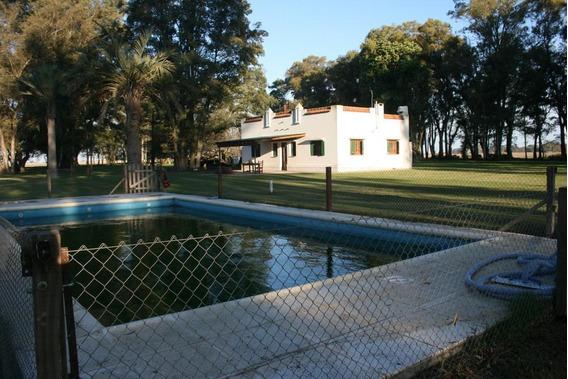 Campo En Venta - 207 Ha En Azul, Provincia De Buenos Aires -campo Agricola Ganadero Con Casco