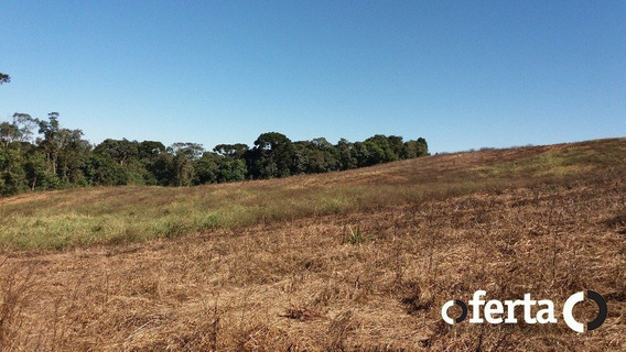 Chacara - Lagoa Grande - Ref: 355 - V-355