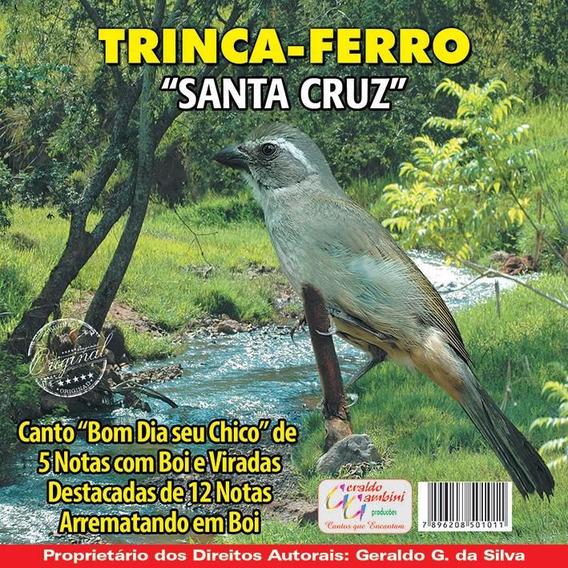 CURRUCUTIL GRATIS CANTO TRINCA BOI FERRO BAIXAR