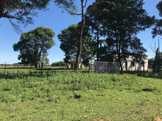 Oportunidad Campo En Mburucuya