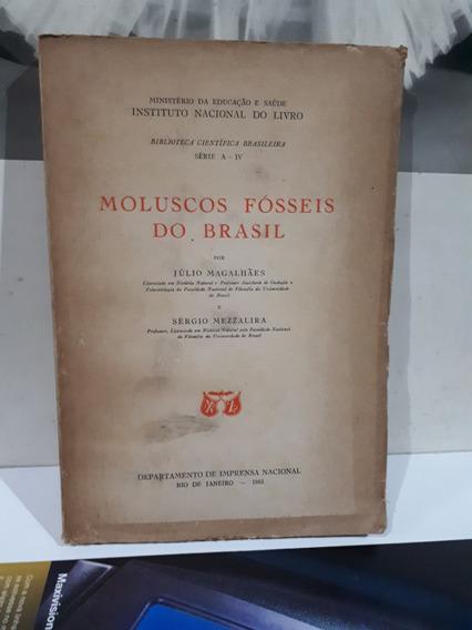 Raro Livro Moluscos Fósseis Do Brasil Fóssil De Verdade 1953