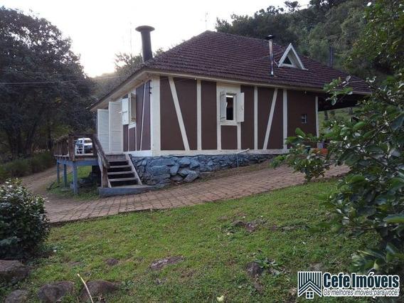 Sítio / Chácara Para Venda Em Morro Reuter, Belvedere - 959_2-1071871