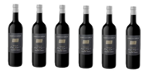 Vino Antucura Yepun Malbec Single Vineyard X 6