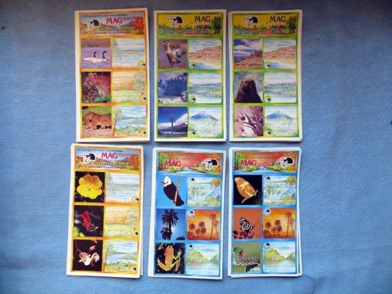 Etiquetas Fundación Vida Silvestre X 18 Unidades Naturaleza