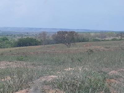 Fazenda A Venda Em Coxim - Ms (pecuária) - 1148