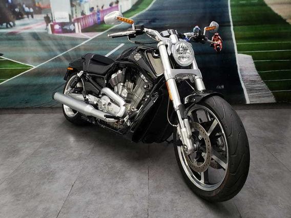 Harley Davidson V-rod Muscle Vrscf 2015/2015
