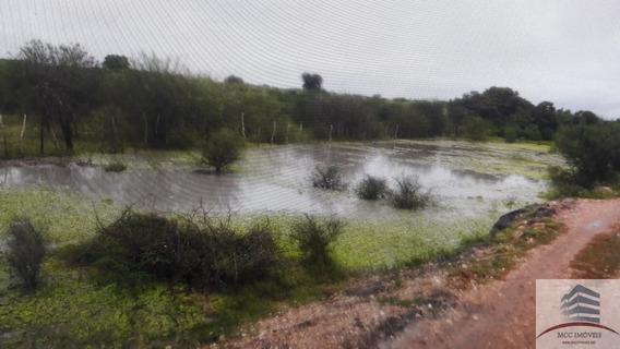 Fazenda A Venda Em Cachoeirinha Em São Paulo De Potengí