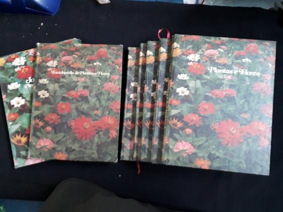 Coleçao Plantas E Flores 6 Volumes Mais Box Jornal De Pl Fl