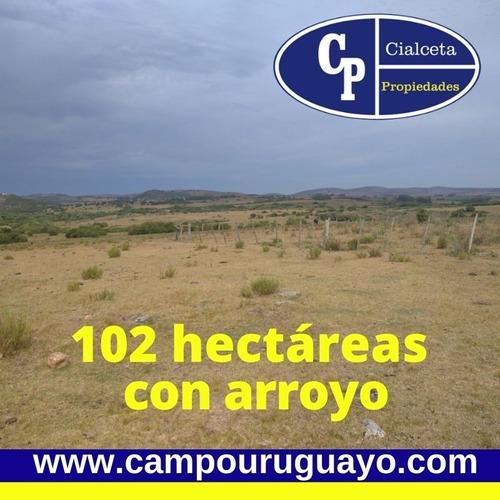 Campo Con Casa Y Arroyo, Buena Vista, Excelente Punto