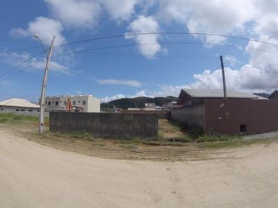 Terreno Murado E Aterrado - Imb339 - Imb339