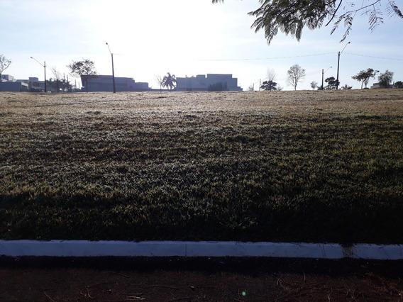 Terreno Padrão Em Cambé - Pr - Te0022_gprdo