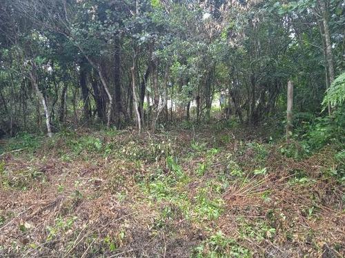Terreno Em Itanhaém, Aceita Entrada + Parcelas - 7691