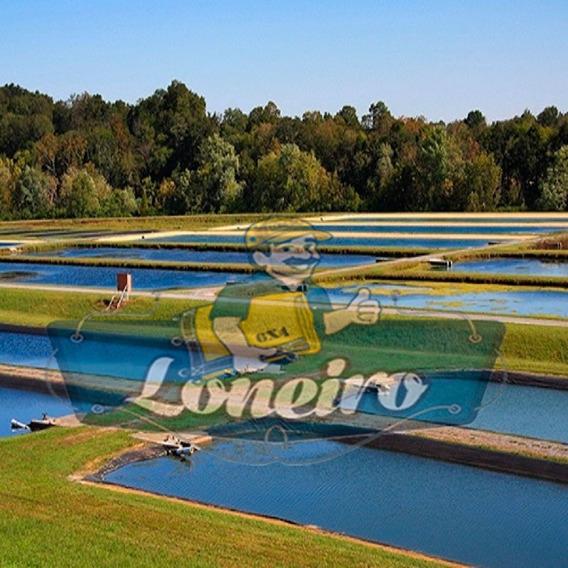 Lona Redonda Azul 3,5 M De Diâmetro Lago Tanque Peixes Manta