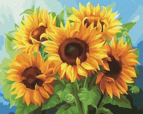Imagen 1 de 7 de Kit De Pintura Al Óleo Sobre Lienzo Por Números