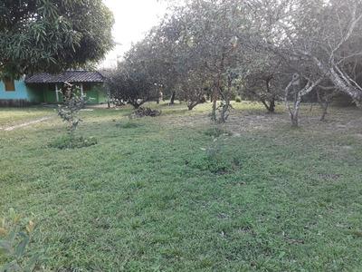 Sitio Rancho Santa Rosa Quatipuru Sacatandeua 38000m²