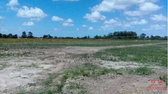 Terreno De 12x30mts Na Vila Princesa - Aceita Financiamento - 7542