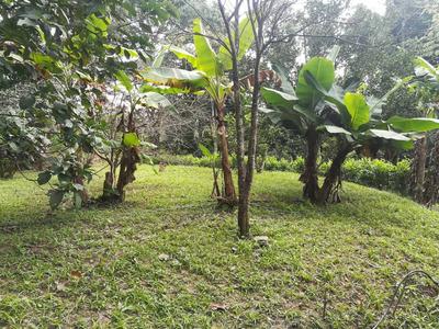 Casa En Terreno Ecológico Fundo El Chuponal