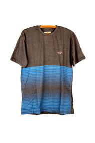 Camiseta Hollister Basica