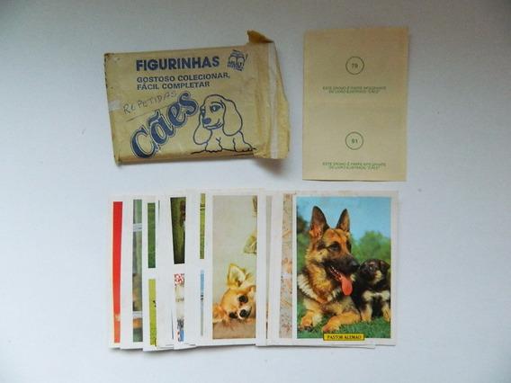 Cromo Figurinha Do Álbum Cães - 1987 - Multi Editora