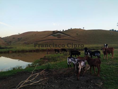 Fazenda À Venda No Bairro Jardim Alvorada - Jacareí/sp - Fz098