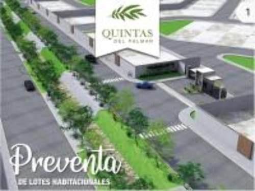 Terreno En Venta, Torreón, Coahuila De Zaragoza