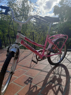 Bicicleta Rosada Tomaselli Rodado 20