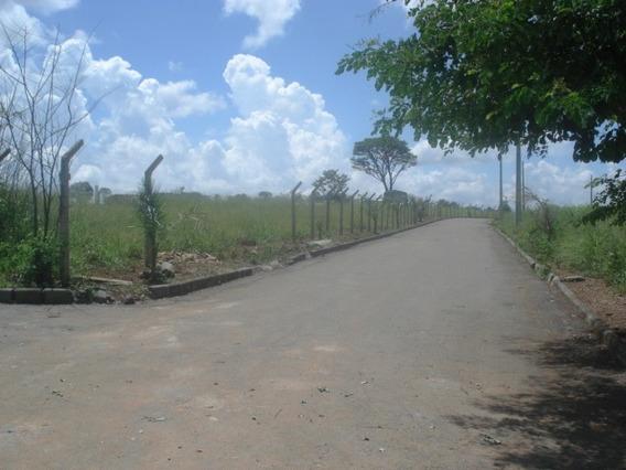 Terreno / Área Para Comprar No Presidente Em Matozinhos/mg - Ci1868