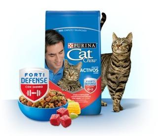 Cat Chow Adultos Activos Carne Por 8 Kil - kg a $13