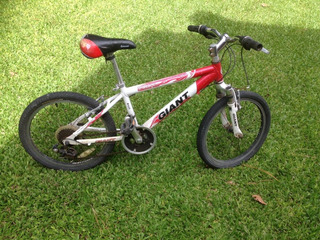 Bici Giant Rodado 20