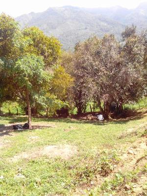 Rioseco Lote 300m2 Clima Medio Zona Ecoturistica