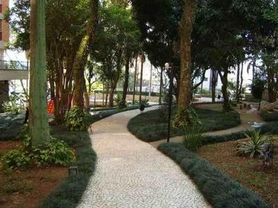 Apartamento Residencial Para Venda E Locação, Jardim Apolo, São José Dos Campos. - Ap1533