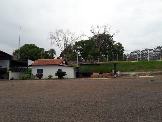 Terreno - Venda - Vila Messias - Cod. 14012 - V14012