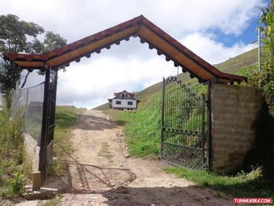 Hacienda Finca Terreno Posada Siembra La Colonia Tovar