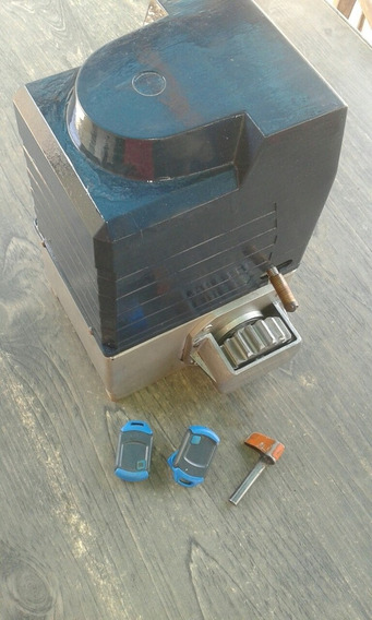 Motor Porton Electrico