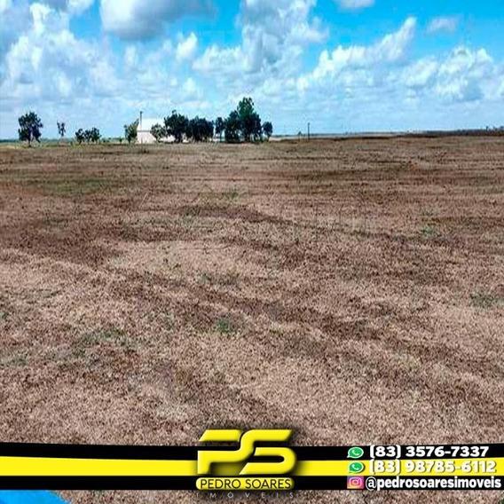 Fazenda À Venda, 32 Mil Hectares Por R$ 160.000.000 - Vila Bom Jardim - Açailândia/ma - Fa0027